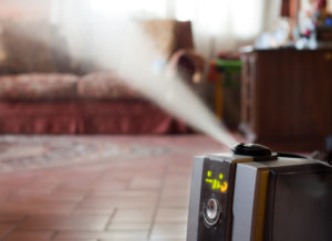 Humidifier with ionic air purifier