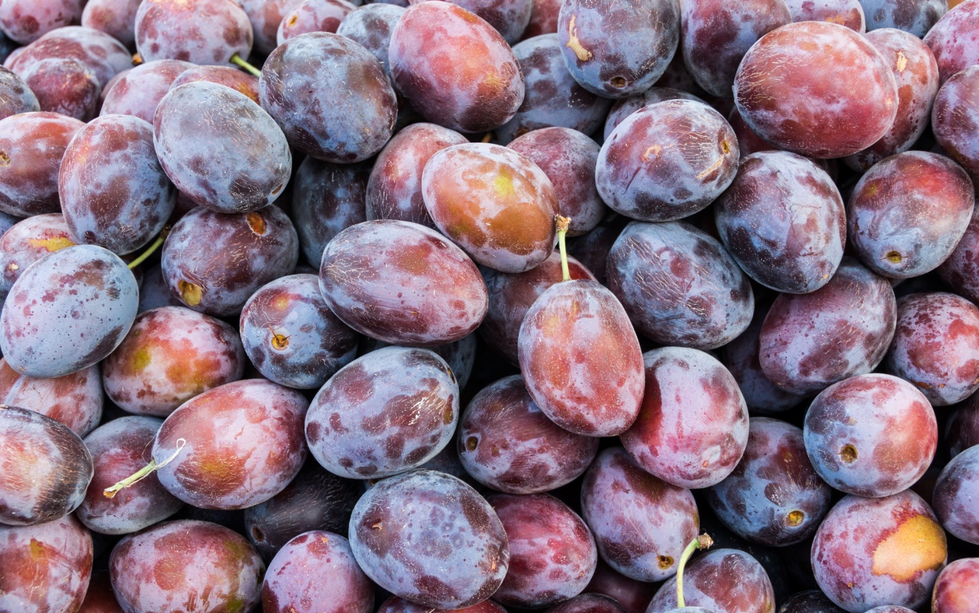 grapes fruits illness