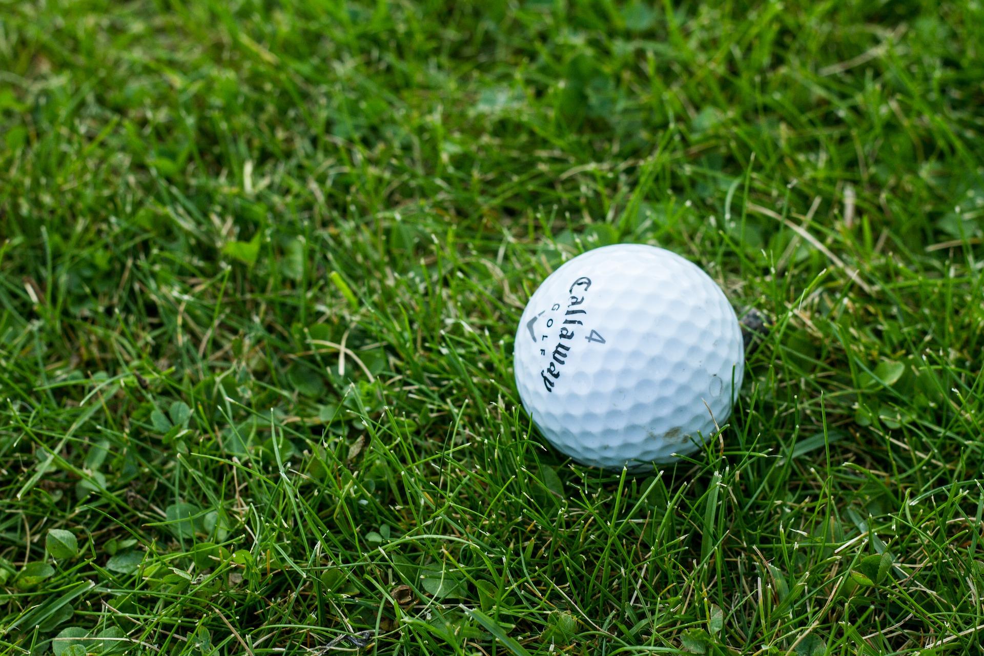 golf ball on green turf ground