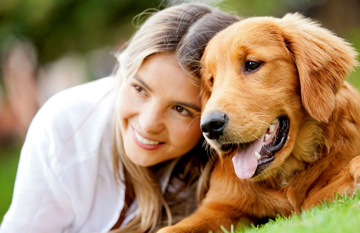 5 Health Benefits of Emotional Support Animal You Ought to Know dog
