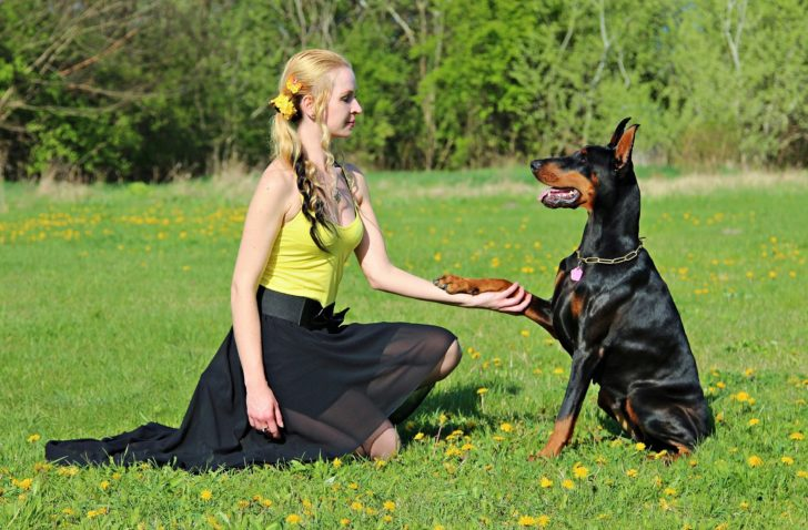 5 Ways to Benefit From DOGA—Yoga with Dog