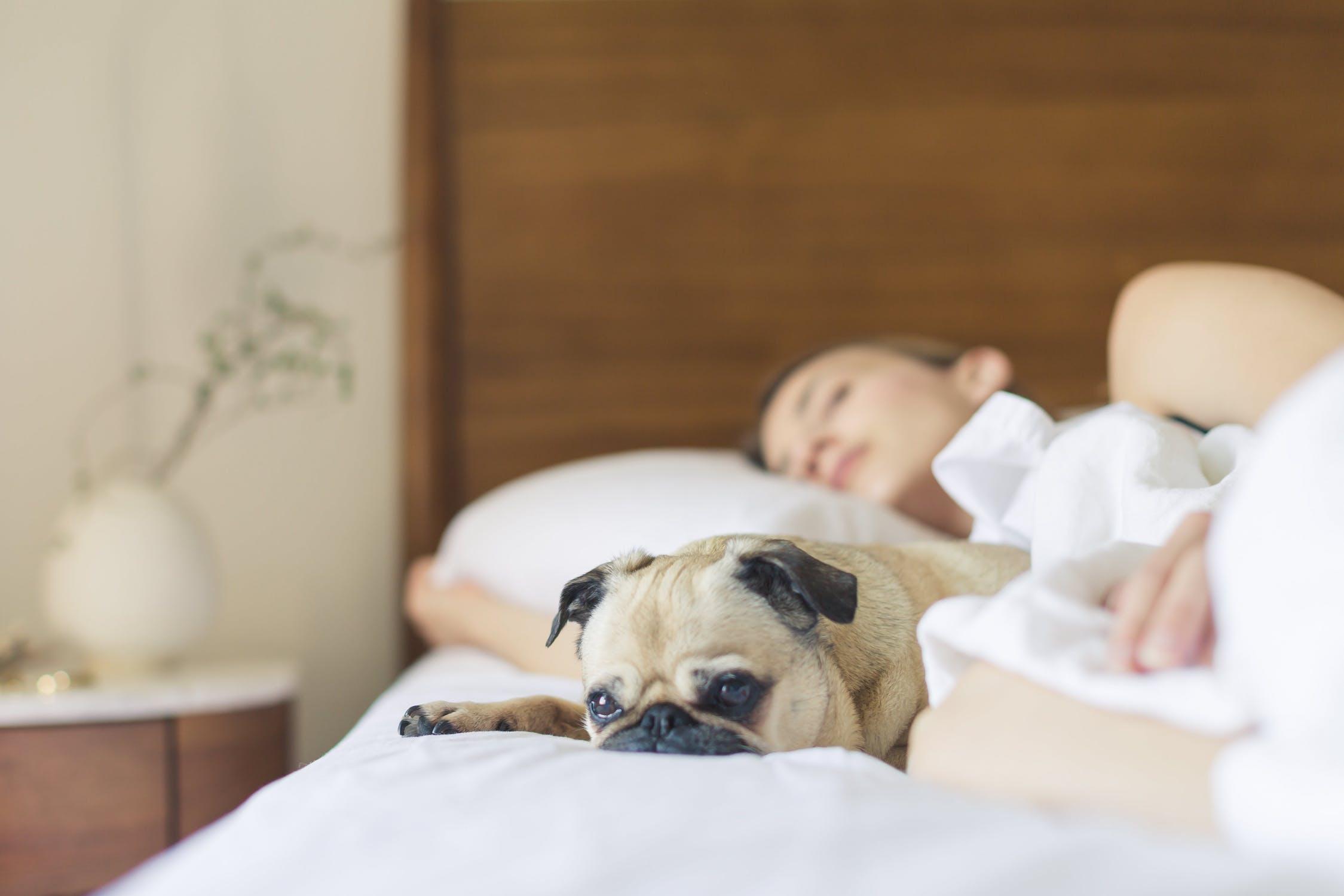 Top 6 Self Help Strategies to Say Bye Bye to Snoring