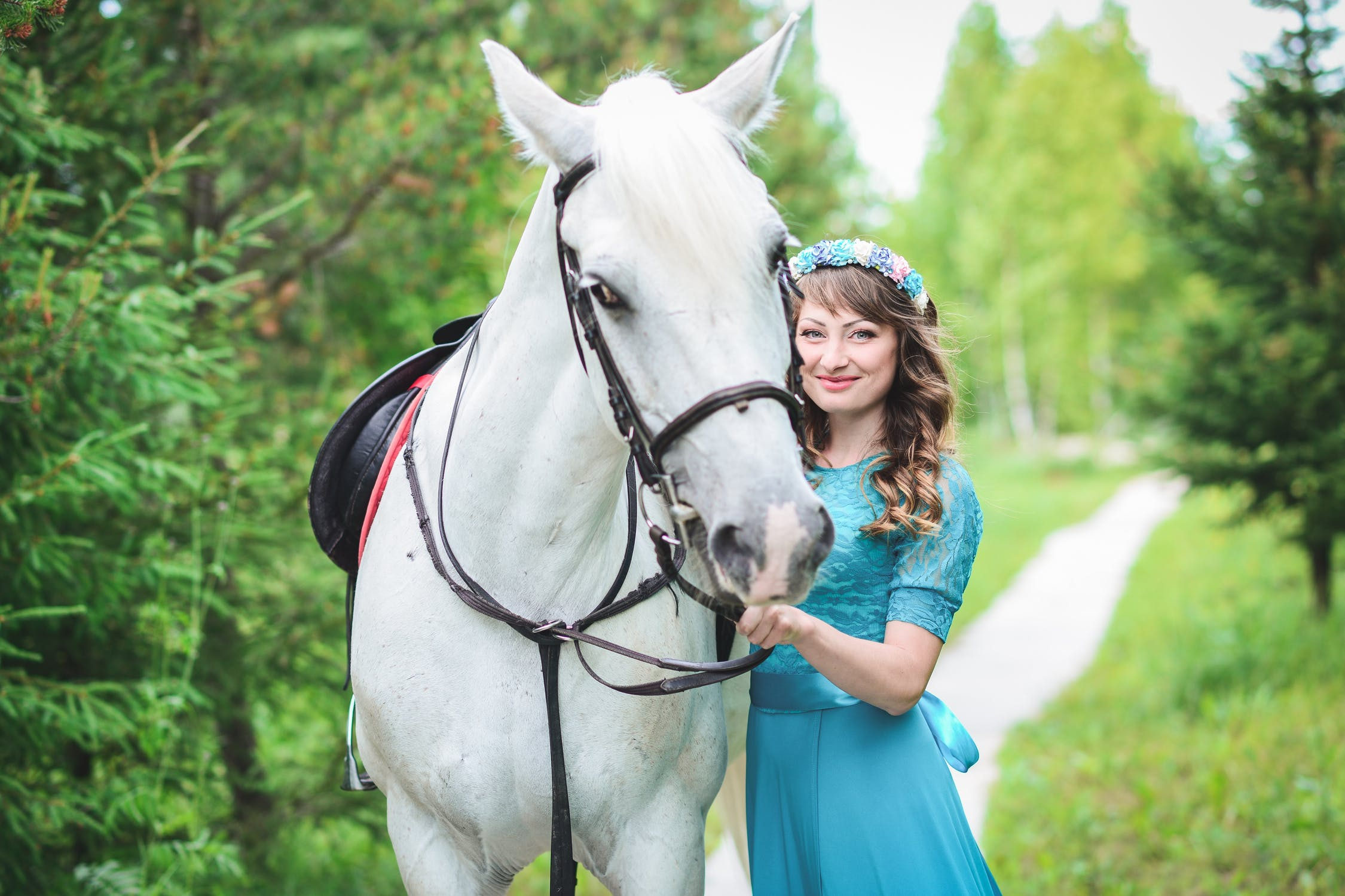 Everything that you need to know about your horse's health