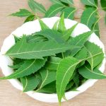 Top benefits of using Neem leaves