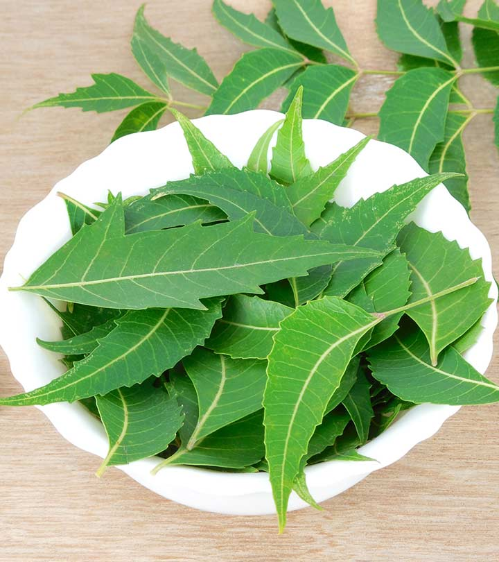 Top benefits of using Neem leaves
