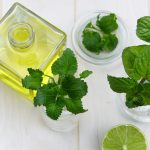 Healing Herbs: 5 Medicinal Plants With Amazing Health Properties