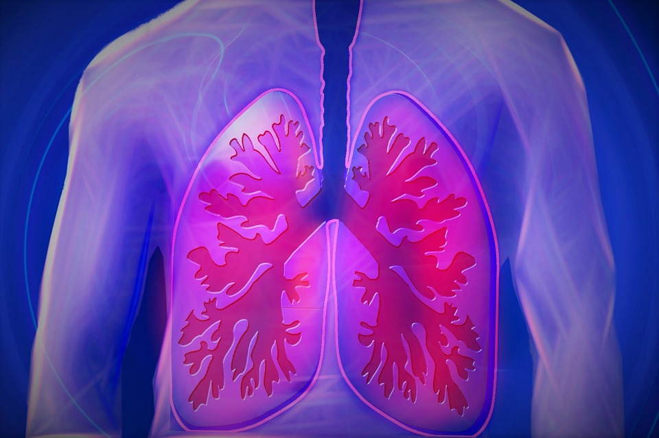 How to Know if You Are Suffering from a Pulmonary Embolism and What You Need to do