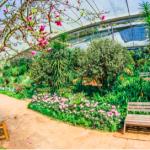 13 garden maintenance tips throughout the seasons