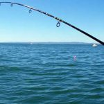 Best types of fishing you should try