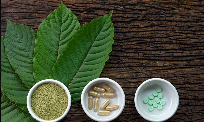 What Is Kratom and Why Is It So Popular?