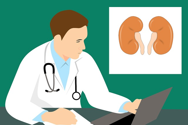 Chronic Kidney Disease: Symptoms, Prevention & Treatment
