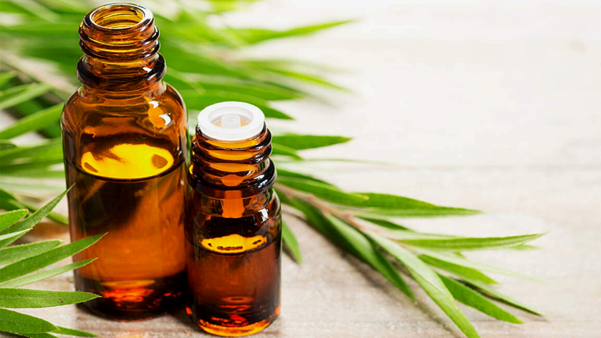 Benefits of tea tree oil on face: Everything to know about it