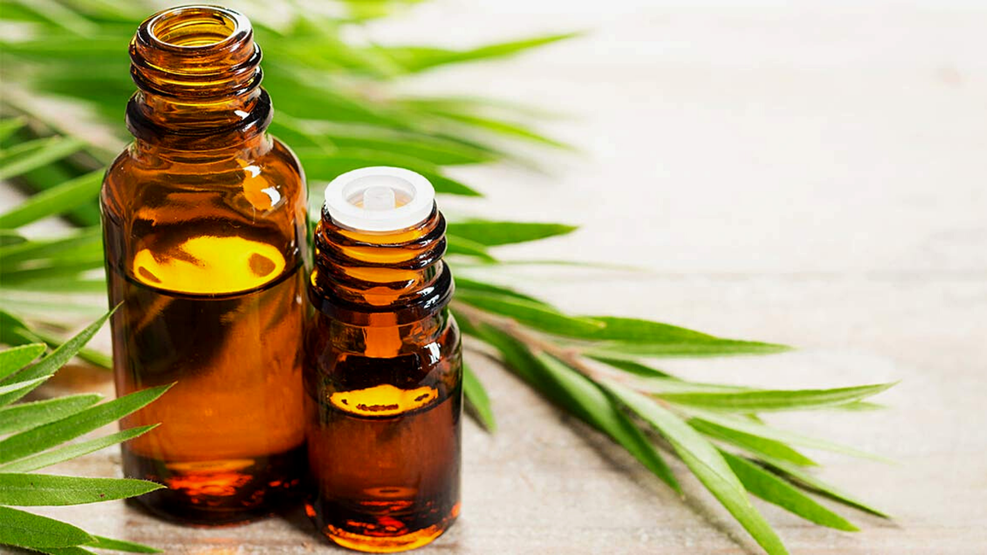 benefits of tea tree oil on face