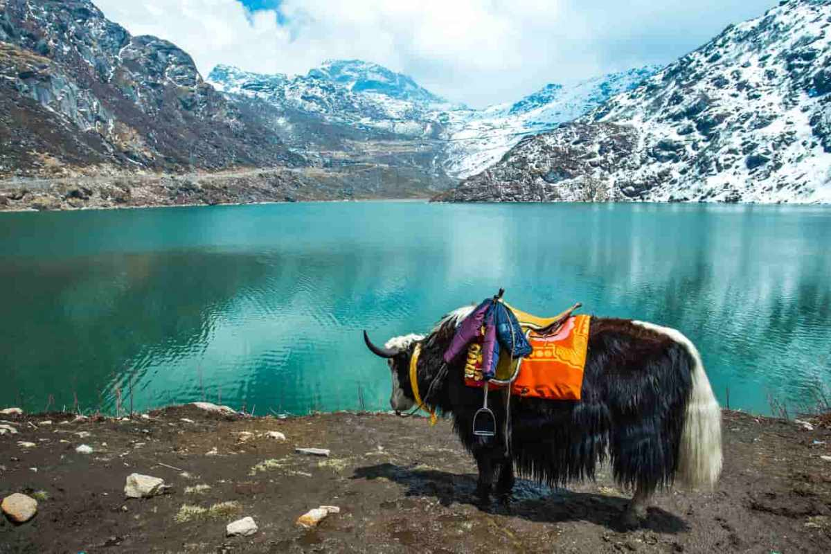 Best Indian Tourist Places: Must Visit Places On Your Travel List For 2021
